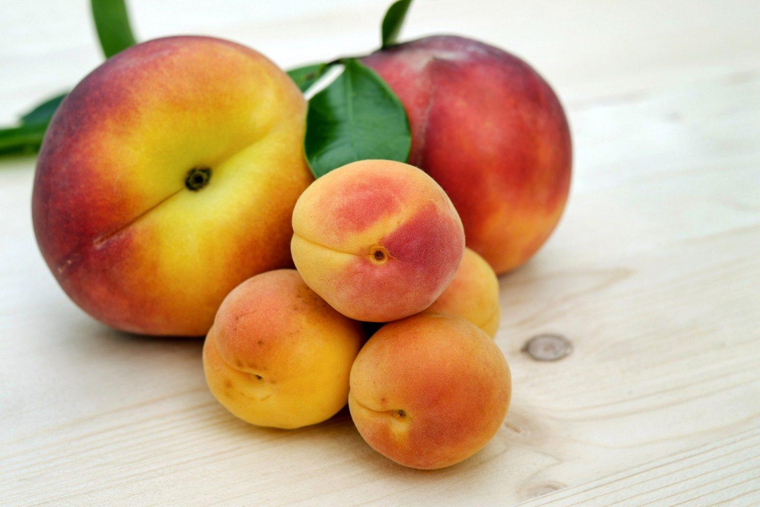 El tratamiento postcosecha ecológico para fruta de hueso SANI-FH L consigue la certificación sin residuos de ZERYA.